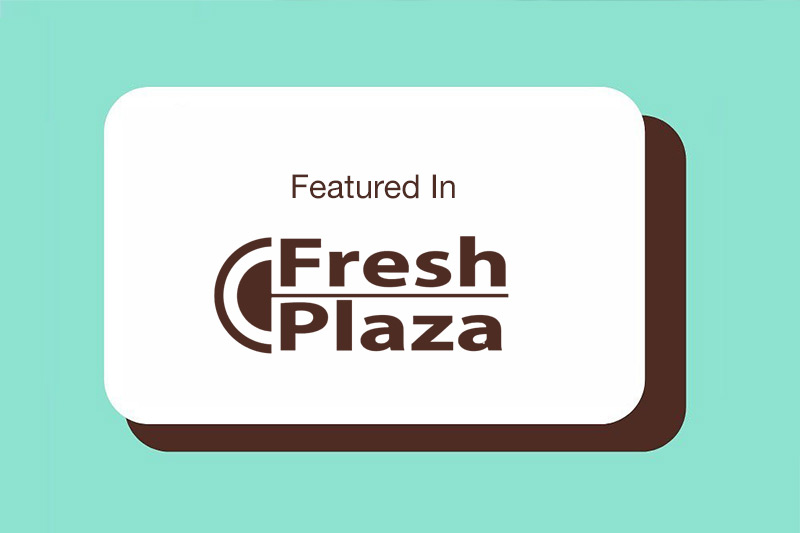 blog_press_fresh_plaza